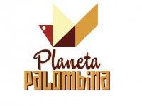 Planeta Palombina Kayaks