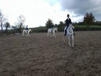 Dressage at Old Orchard Stables