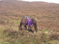 Hacking with Scottish Equestrian Hotel