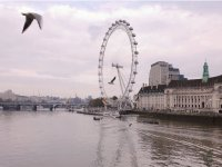 Sightseeing Experience for Kids in London for 25mi