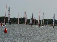 A fleet of windsurfers