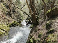 Canyoning in Alva Gorge