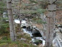 Scenic Glen Bruar