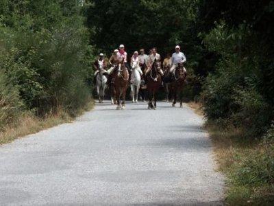 Pony Club Aragón