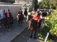 Group Trekking at Snowdonia Riding Stables