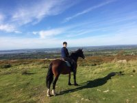Open Trekking with Snowdonia Riding Stables