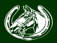 Aberconwy Equestrian Centre Logo