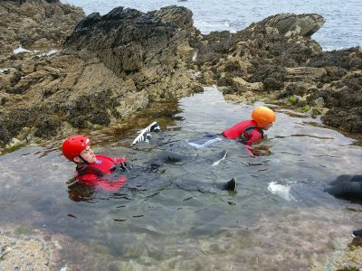Half Day Coasteering Tour for Children in Anglesey