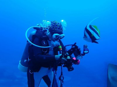 Digital Underwater Photography Course Kent 1 day