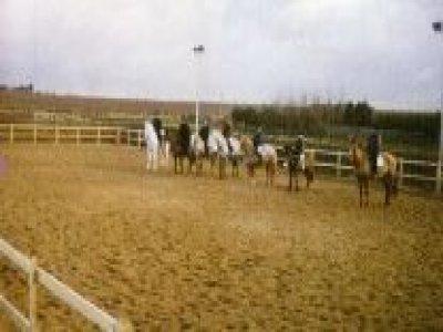 Thwaite Common Riding Stables