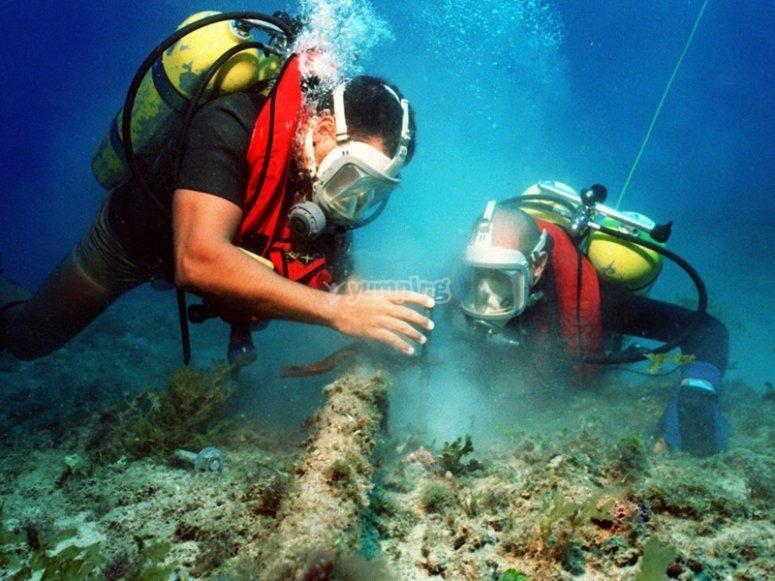 Respect underwater habitats