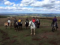 Group Trekking at Tynings