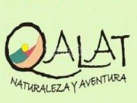 Qalat Team Building