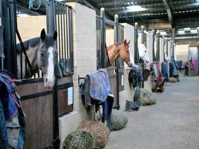 Bury Farm Equestrian Centre