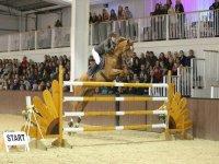 Jumping Advanced Level Shows at Bury Farm Equestrian Centre