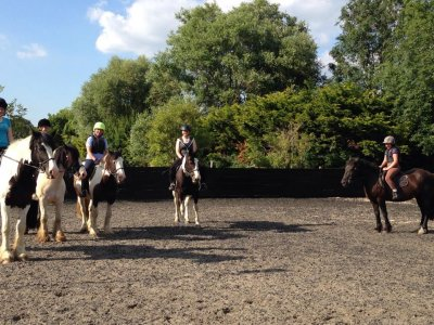 Horse Hacking in Hambrook for 1h