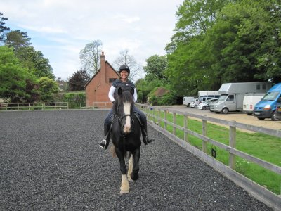 Horse Hacking Adventure in Hambrook for 2h