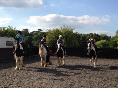 Horse Walkout for Adults in Hambrook for 1h
