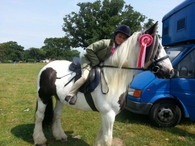 Horse Walkout & Free Lesson for Kids Hambrook 1h