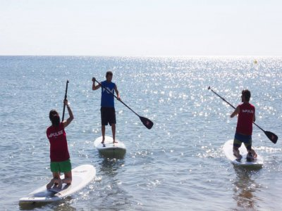 Impulse Paddle Surf