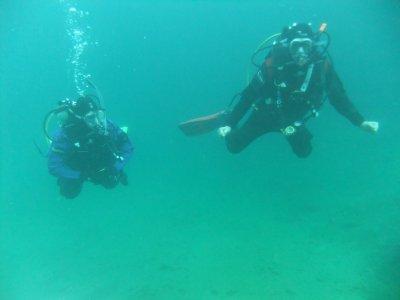 Dreamscape Divers