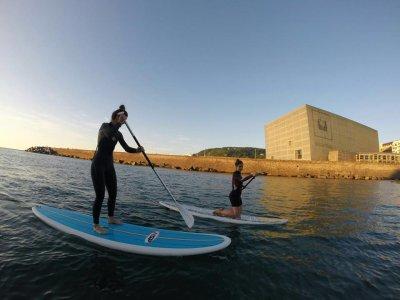 Free Surf Eskola