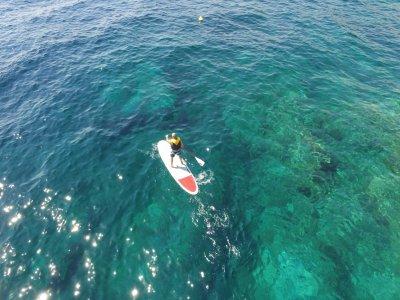 Tourist Service Llafranc Paddle Surf