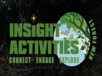 Insight Activities