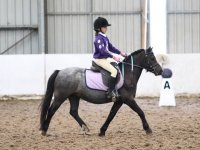 Hacking at Quob Stables Equestrian Centre