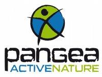 Pangea Active Nature Vía Ferrata
