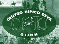 Centro Hípico Deva Campamentos Hípicos