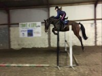 Showjumping at Crindle Stables