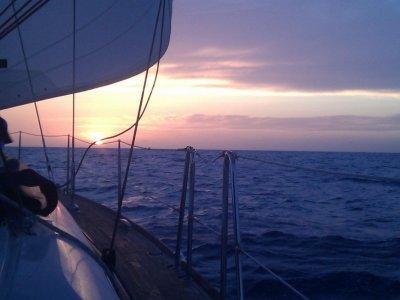 Rent  catamaran Port Olimpíc