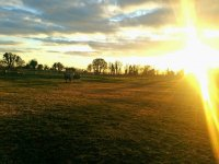Look at the beautiful sunset at Hartwell Riding Stables