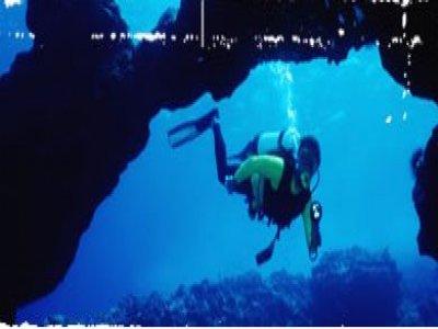 Adventure Devon Diving