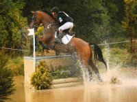 Showjumping at Park View Equestrian Centre