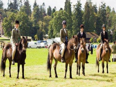 Edinburgh University's Exmoor Pony Trekking Society