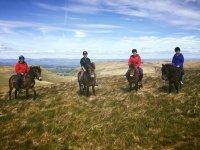 Dressage at Edinburgh University's Exmoor Pony Trekking Society