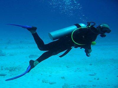 Platinum Divers