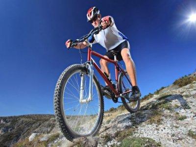 Forest Adventure Mountain Biking