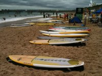 A selection of paddleboards