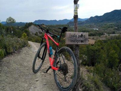 Bicikultura