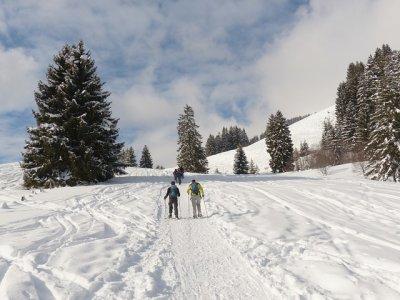 Ascensiones Guiadas Raquetas de Nieve