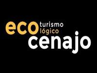 EcoCenajo Puenting