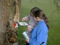 Orienteering also available.