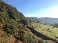 UK terrains