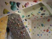 Woody training wall