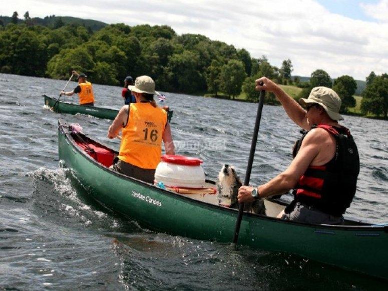 Fabulous paddling with dog