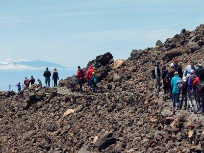 Volcano Life