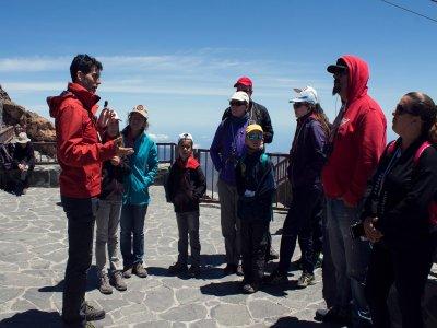 Volcano Life Visitas Guiadas